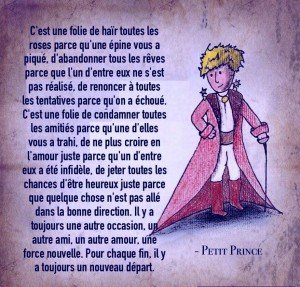 Roses, petit prince